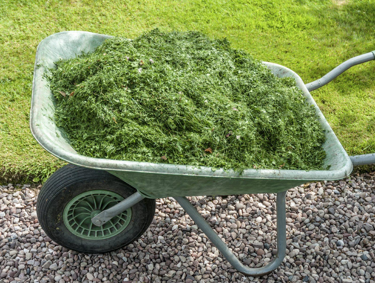 grass-mulch-jpg.jpg